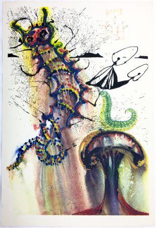Rotocalcografia Dali - ADVICE FROM A CATERPILLAR (For Alice in Wonderland. New-Yok 1969).