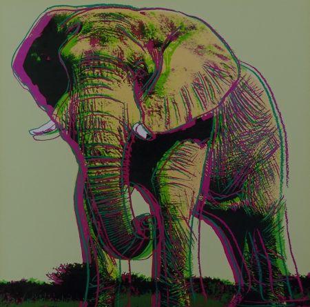 Serigrafia Warhol - African Elephant