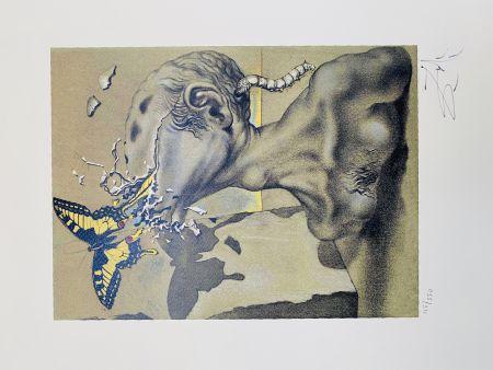 Litografia Dali - Allegoria di Lama