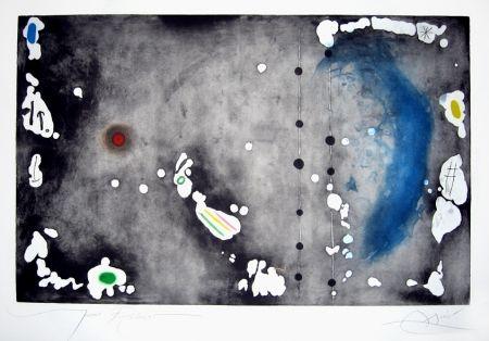 Acquaforte E Acquatinta Miró - Archipel sauvage 1