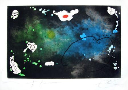 Incisione Miró - Archipel sauvage n° 4