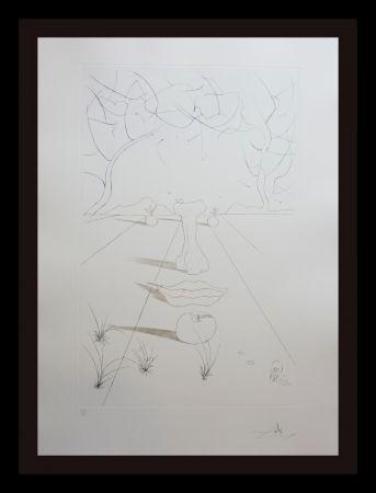 Incisione Dali - Aurelia Visage Surrealiste