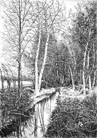 Acquaforte Cotugno  - Autunno