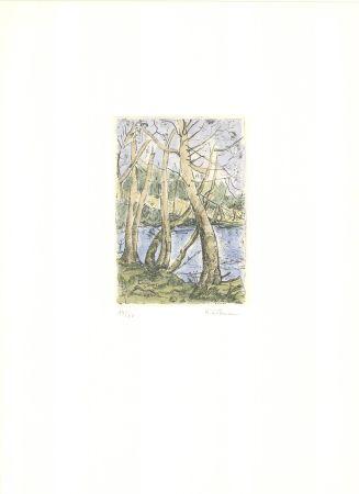 Incisione Wittmann - Bäume