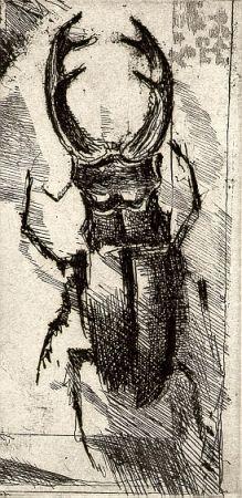 Libro Illustrato Calandri - Ballades Et Rondeaux Du Testament Villon