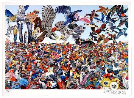 Grafica Numerica Erro - Birdlandscape