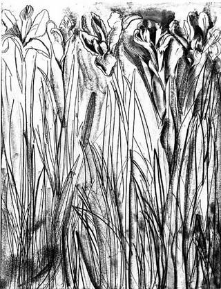 Incisione Dine - Black & White Flowers I