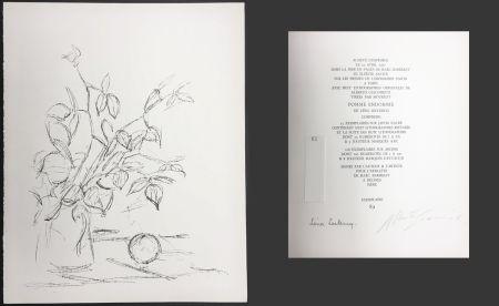 Litografia Giacometti - BOUQUET ET POMME (Bouquet and Apple). Lithographie originale. 1961.