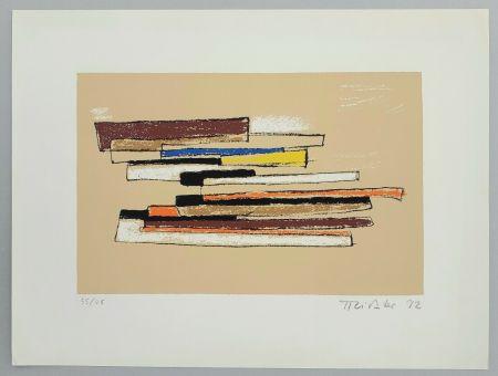 Serigrafia Richter - Composizione