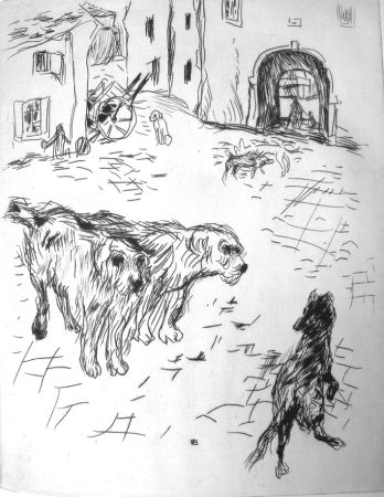 Libro Illustrato Bonnard - Dingo