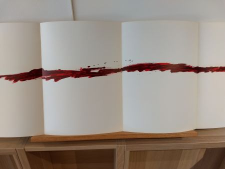 Libro Illustrato Tapies - Dlm180