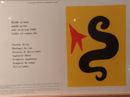 Libro Illustrato Calder (After) - DLM195