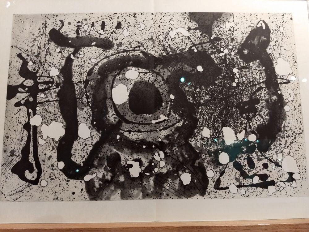 Libro Illustrato Miró - DLM 121 122