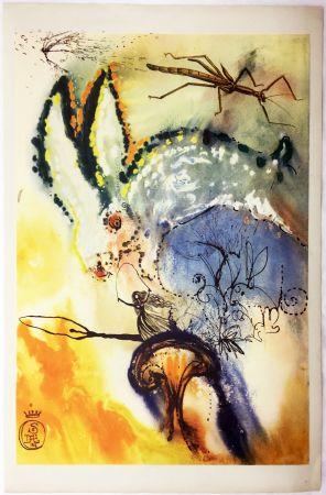 Rotocalcografia Dali - DOWN THE RABBIT HOLE (From Alice in Wonderland. New-Yok 1969).