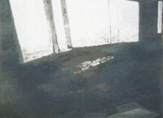 Serigrafia Tuymans - Fenêtres
