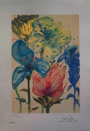 Litografia Dali - Fiori Surrealisti