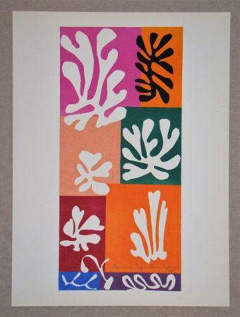 Litografia Matisse (After) - Fleur De Neige - 1951