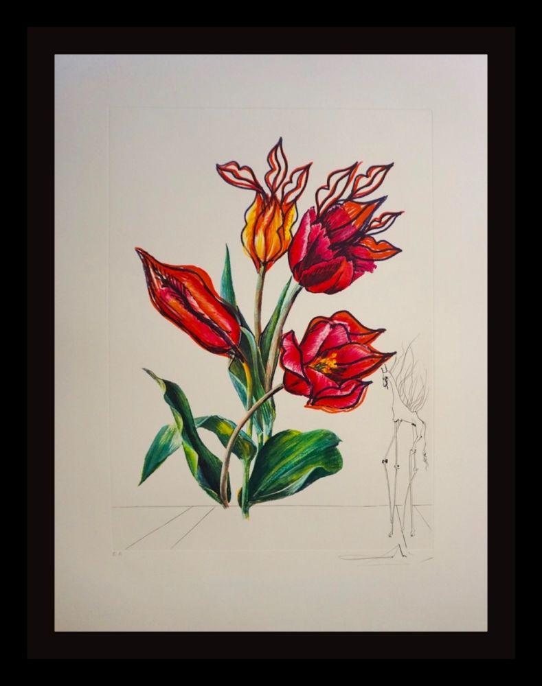 Incisione Dali - Florals Tulips Girafe en Feu