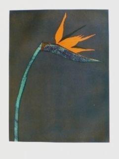 Incisione Scholder - Flower At Barcelona