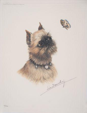 Acquaforte Danchin - Griffon Bruxellois et papillon - Brussel Griffon and butterfly