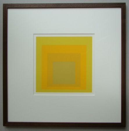 Non Tecnico Albers - Homage to the Square