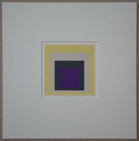 Serigrafia Albers - Homage to the Square - Dedicated