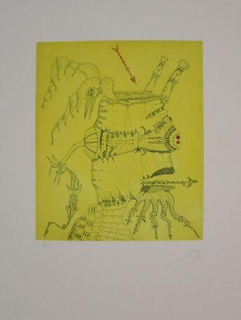 Acquaforte E Acquatinta Ponç - Homenaje a Dürer