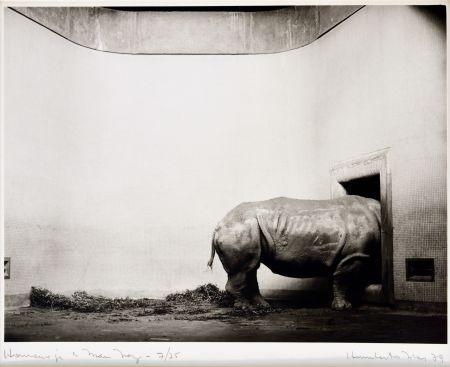 Fotografie Rivas - Homenaje a Man Ray