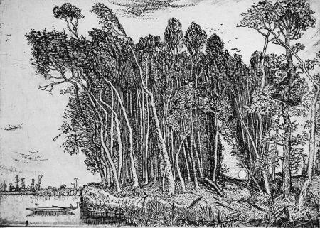 Acquaforte Bozzetti - Il bosco in riva al fiume: sera