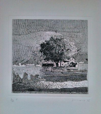 Acquaforte Ferroni - Il grande albero