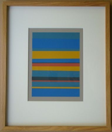 Serigrafia Albers - Interaction of Color
