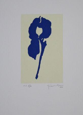 Acquatinta Hernandez Pijuan - Iris Blau Viii / Blue Iris Viii