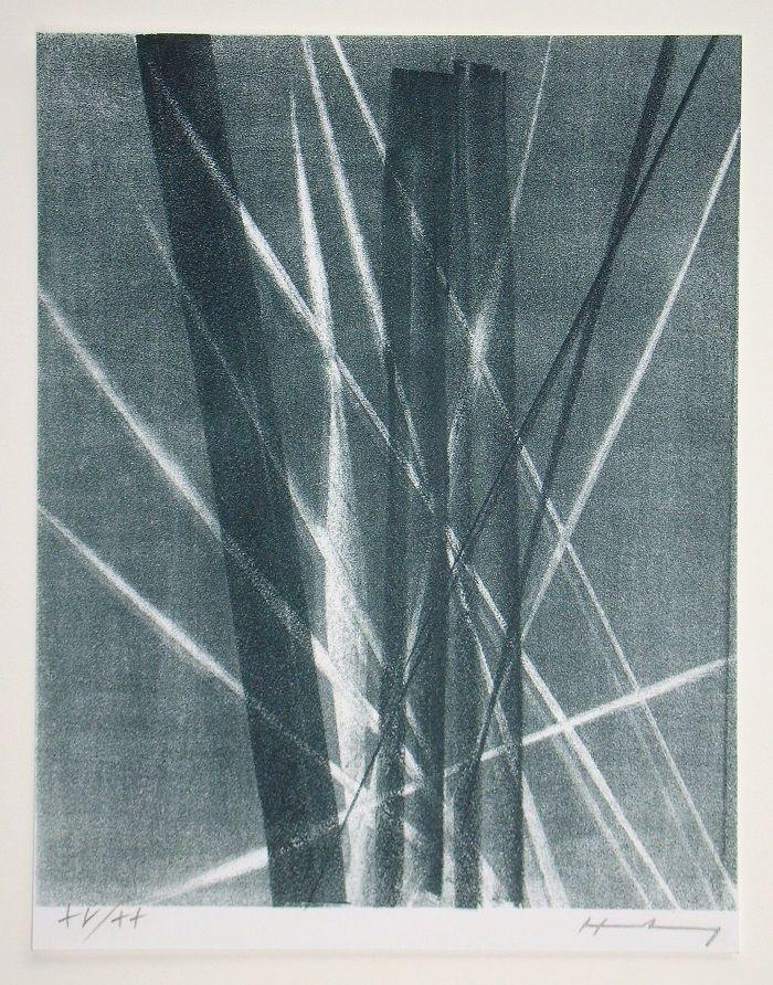 Litografia Hartung -  L 1966 - 40