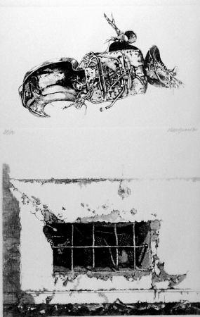 Acquaforte Vespignani - La carcassa - Finestra sul cortile