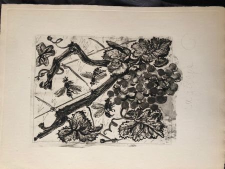 Acquatinta Picasso - La guêpe