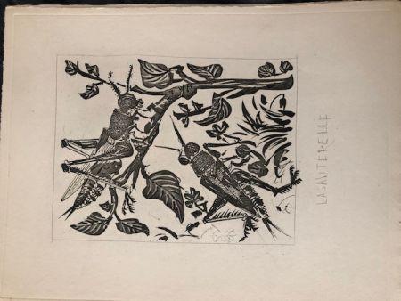 Acquatinta Picasso - La sauterelle