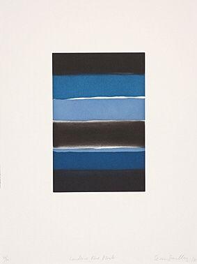 Acquaforte E Acquatinta Scully - Landline Blue Black