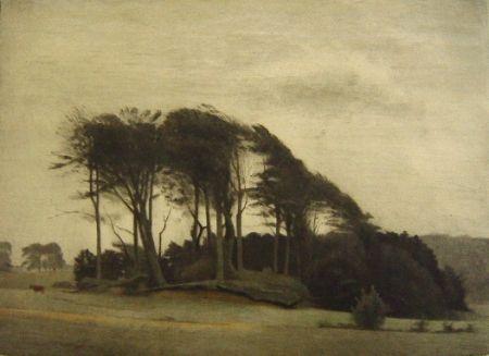 Maniera Nera Ilsted - Landscape At Fredensborg