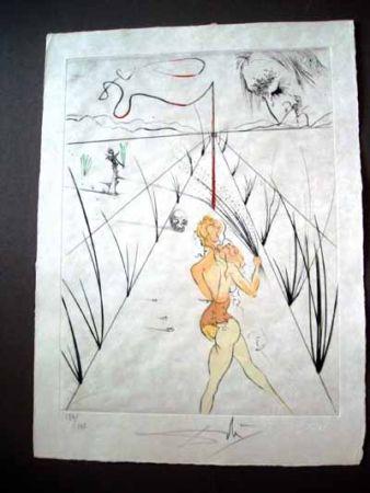 Acquaforte Dali - Lane Of The Biches ( Venus Aux Fourrures)