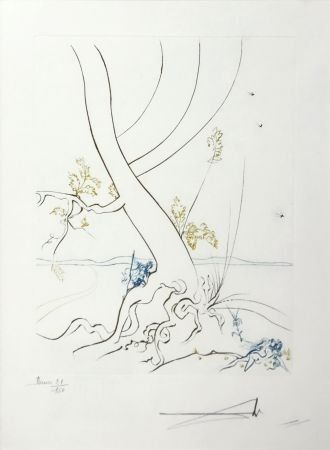 Acquaforte Dali - L'ARBREDE CONNAISSANCE (THE TREE OF KNOWLEDGE)