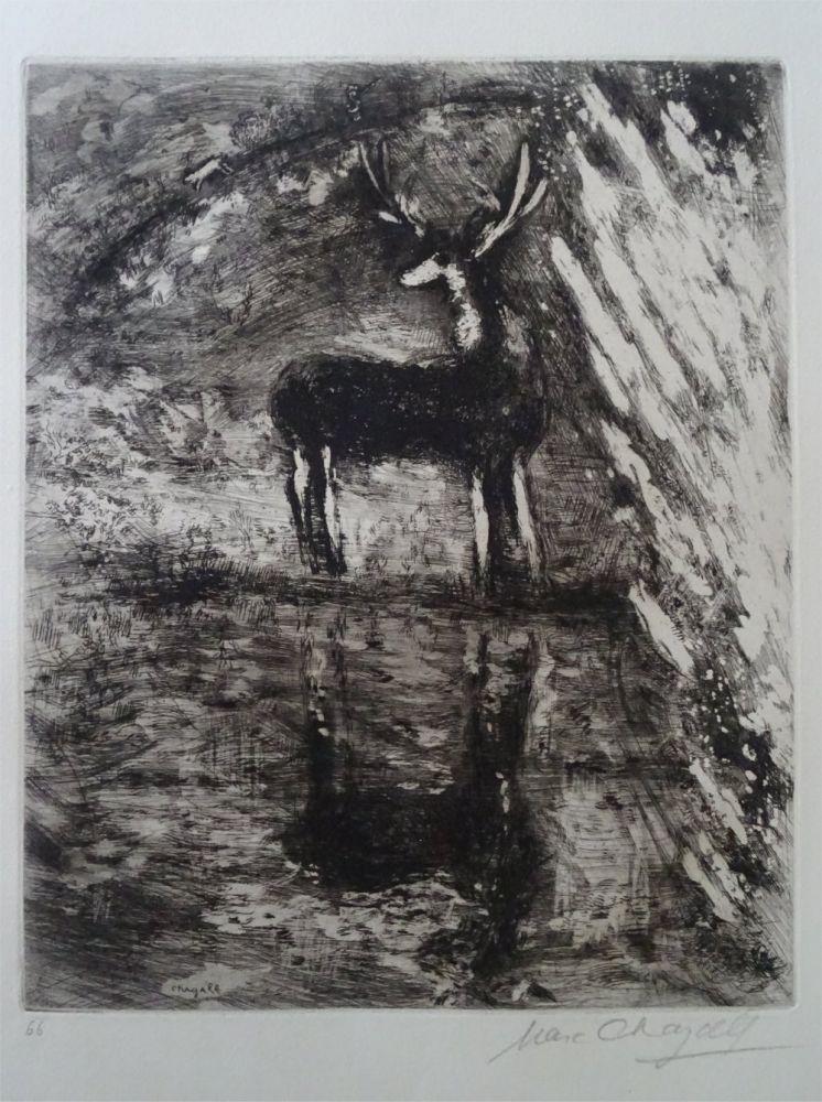 Acquaforte Chagall - Le Cerf se voyant dans l'Eau