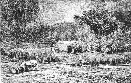 Acquaforte Daubigny - Le cochon dans un verger