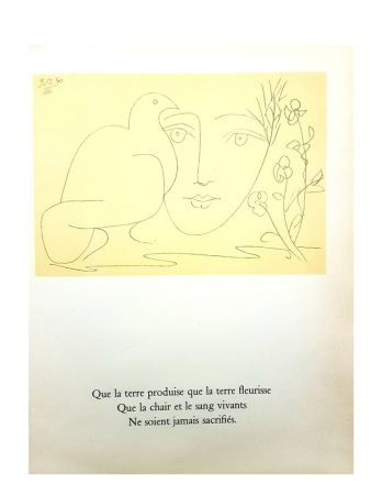 Litografia Picasso (After) - Le Visage de la Paix