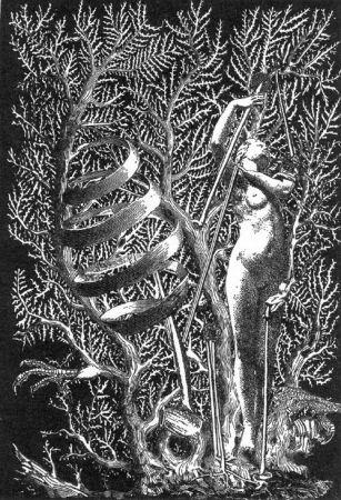 Libro Illustrato Ernst - Lely (Gilbert). Je Ne Veux Pas Qu'On Tue Cette Femme.