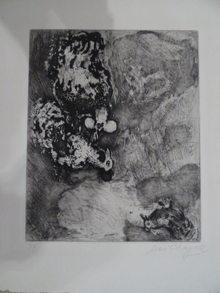 Acquaforte Chagall - Les deux Coqs