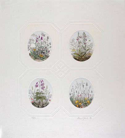 Acquaforte Hauck - Les Fleurs - Flowers