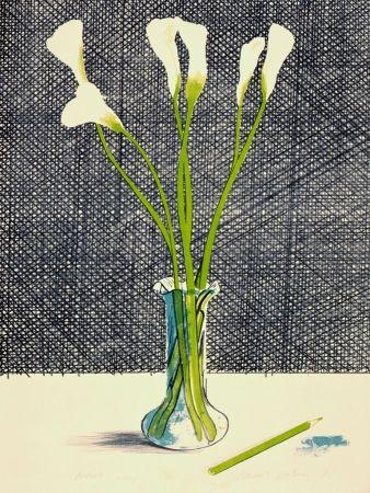 Litografia Hockney - Lillies (Still Life)