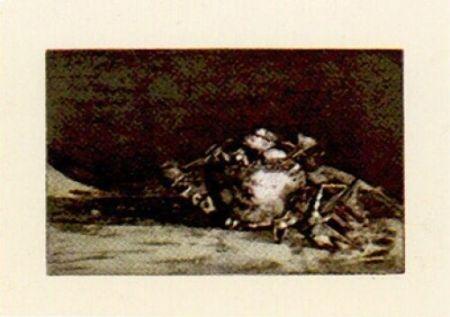 Incisione Muñoz - Llm-4