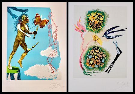 Litografia Dali - Magic Butterfly & The Dream suite