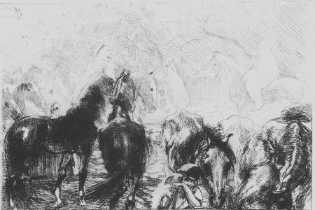 Acquaforte Besnard - Marché aux chevaux a Mainson Carré - Algérie